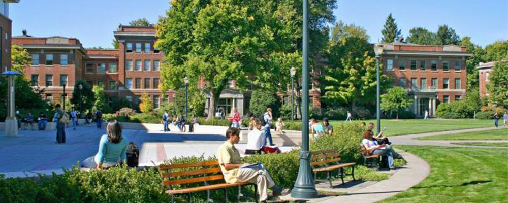 Four Reasons You Need Campus Recruitment